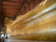 Den enorma Buddha som göras av guld, är på en sockel arkivbilder