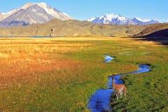 Den enorma dalen Arkivfoton