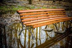 Den ensamma bänken i höst parkerar Royaltyfri Fotografi