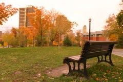 Den ensamma bänken i hösten parkerar royaltyfria bilder