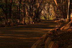 Den ensamma gatan Royaltyfri Foto