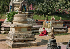 Den ensamma höga munken ber till Buddha i parkera Arkivfoton