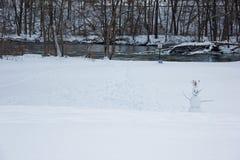 Den ensamma snögubben i en förkylning parkerar Royaltyfri Fotografi