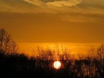 Den episka djupa bärnstensfärgade apelsinen färgar höstsolnedgång Royaltyfri Foto