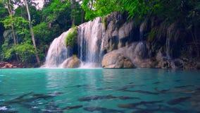 Den Erawan vattenfallet under regnig säsong i tropisk skog i Kanchanaburi lager videofilmer