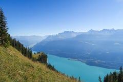 In den erstaunlichen Schweizer Bergen wandern, Ansicht der Alpen, grünes Gras, Wald-swiand Fußweg stockfotografie