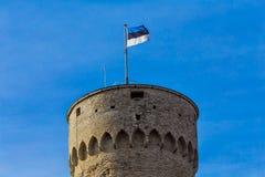Den estländska flaggan i Tallinn, Estland Royaltyfria Bilder