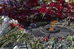 Den eviga flamman parkerar in Slavy Royaltyfria Bilder