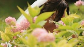 Den exalterade bruden som luktar rosa färger, blommar i solig trädgård stock video