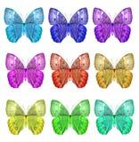 Den exotiska uppsättningen av kambodjanJunglequeen fjärilar vänder mot profil in Arkivfoton