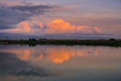 Den färgade solnedgången fördunklar över Santa Cruz berg reflekterade i dammen av södra San Francisco Bay, Sunnyvale, Kalifornien Royaltyfria Bilder