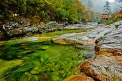 Den färgglada flodstranden Arkivfoto