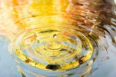 Den färgrika blomman av vattenreflexionen och vatten tappar Arkivfoto