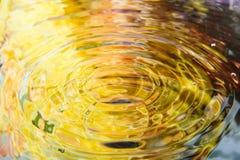 Den färgrika blomman av vattenreflexionen och vatten tappar Royaltyfri Bild