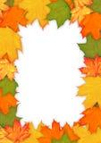 Den färgrika hösten låter vara ramen Arkivfoton