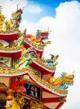 Den färgrika kinesiska draken och svanen skulpterar på taken av ch Royaltyfri Foto
