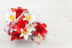 Den färgrika liljan blommar korgen Royaltyfria Foton