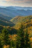 Den färgrika nedgången lämnar att pricka de ändlösa bergen i de rökiga bergen royaltyfria bilder