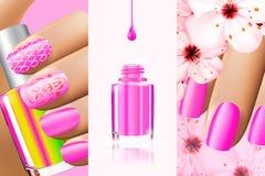 Den färgrika rosa samlingen av spikar designer för sommar och fjädrar Illustration för vektor 3d Nailpolish färgannonser, spikar Royaltyfria Bilder