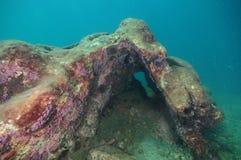 Den färgrika sprickan i undervattens- vaggar royaltyfri bild