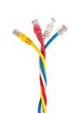 Den färgrika vridna internet kablar på en vit bakgrundsnärbild Royaltyfri Fotografi