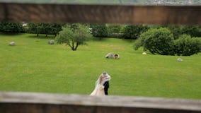 Den försiktiga sinnliga omfamningen av bruden och brudgummen på deras bröllopdag mot bakgrunden av grönt gräs och en trädgård stock video