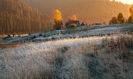 Den första frosten i morgonsolen i byn Arkivbild