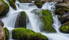 Den första källan av vatten royaltyfria bilder