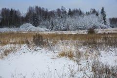 Den första snön har täckt jordningen Royaltyfria Bilder