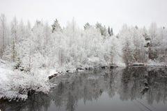 Den första snowen. arkivbild