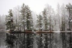 Den första snowen. royaltyfri foto