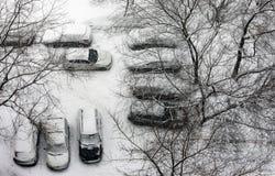 Den första snowen Royaltyfria Bilder