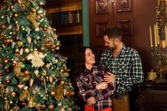 Den förtjusande caucasian maken och frun förbinder, december royaltyfri foto