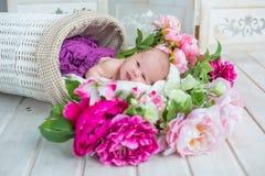 Den förtjusande gulliga sötsaken behandla som ett barn flickan i den vita korgen med blommor på trägolv Royaltyfri Fotografi