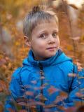 Den förvånade och nöjda pojken i höst parkerar arkivbilder
