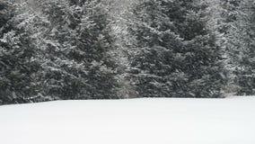 Den fallande insnöade snöstormen under vintern, snöar det! Arkivbild