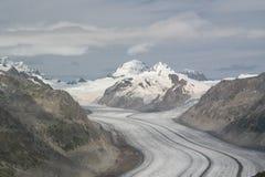 Den fantastiska Aletsch glaciären arkivbilder