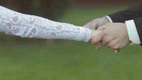 Den fantastiska bruden och brudgummen tar varje - annat händer stock video