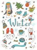 Den fantastiska samlingen av handen drog vintern gällde grafiska beståndsdelar Royaltyfri Bild