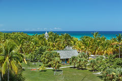 den fantastiska sikten av tropiska palmträd arbeta i trädgården mot bakgrund för det stillsamma havet och för blå himmel Arkivbilder