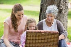 Den farmormodern och dottern med picknickkorgen på parkerar Arkivfoton