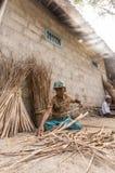 Den fattiga armodkvinnan samlar till salu gräs royaltyfria foton