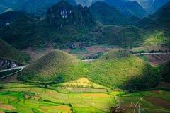 Den felika barmen lokaliseras i den Tam Son staden, Quan Ba District, det Ha Giang landskapet, Vietnam I September färgrika fält  Royaltyfri Fotografi