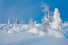 Den felika vintern landskap Royaltyfri Foto