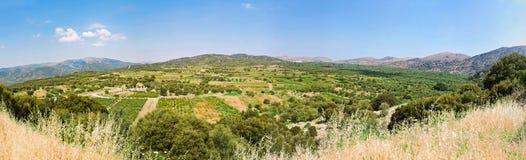 Fertil dal i Grekland Royaltyfria Bilder