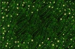 Den festliga vektorn sörjer filialbakgrund Granfilialjul modell, ljus Realistiska gröna prydliga trädfilialer vektor illustrationer
