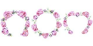 den fina pinken steg Blom- botanisk blomma Fyrkant för ramgränsprydnad Arkivfoto