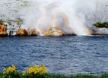 Den Firehole geyseren håller ett stadigt flöde av varmvatten. royaltyfria bilder