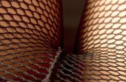 In den Fishnets Lizenzfreie Stockbilder