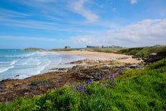 Den Fistral stranden Newquay norr Cornwall UK med blåklockor och vågor i bästa surfa för vår sätter på land i UK Arkivbilder